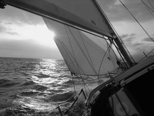 Coquette Sailing Maui Sunset Sails Sailboat Custin Ryan Black And White Water Ocean Spray Yacht Print featuring the photograph Coquette Sailing by Dustin K Ryan
