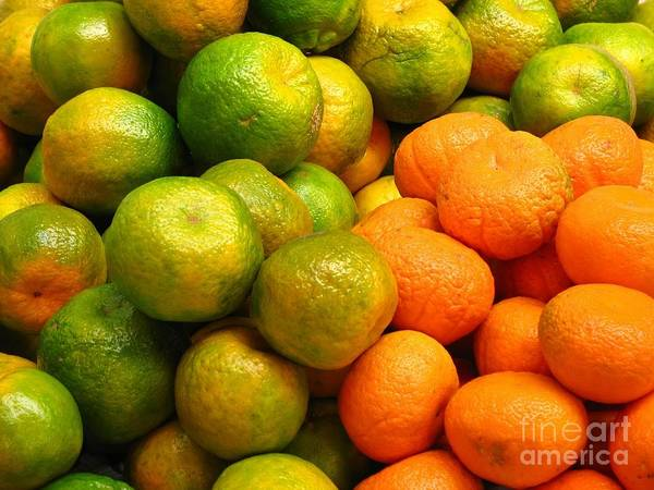 Tangerine Print featuring the photograph Mandarins And Tangerines by Yali Shi