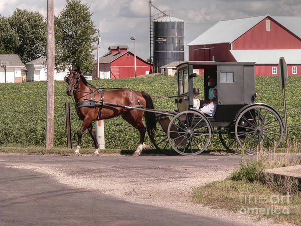 Nappanee Indiana Print featuring the photograph Such Grace - Such Serenity by David Bearden