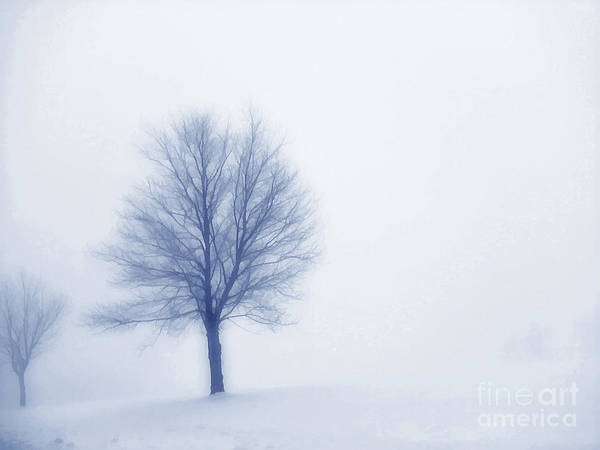 Winter Print featuring the digital art Winter Blues by Randy Steele