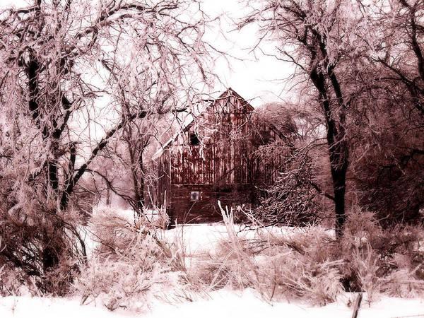 Barn Print featuring the photograph Winter Wonderland Pink by Julie Hamilton
