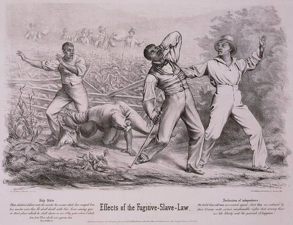 History Print featuring the photograph Effects Of The Fugitive-slave-law by Everett