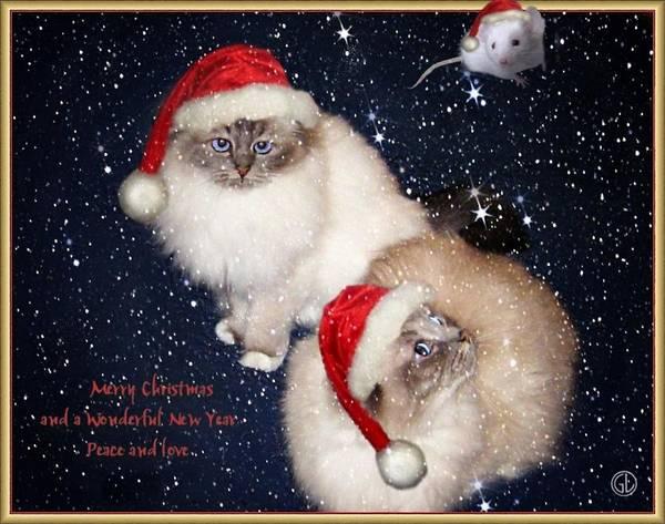 Greeting Card Print featuring the digital art Happy Holidays by Gun Legler
