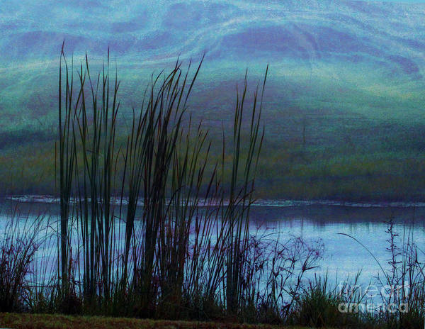 Cattails Print featuring the photograph Cattails In Mist by Judi Bagwell