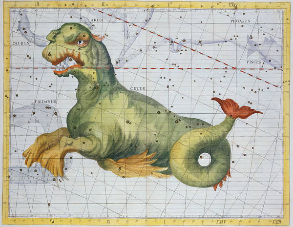Constellation Of Cetus The Whale Print featuring the drawing Constellation Of Cetus The Whale by James Thornhill