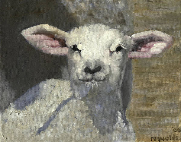 Sheep Print featuring the painting Spring Lamb by John Reynolds