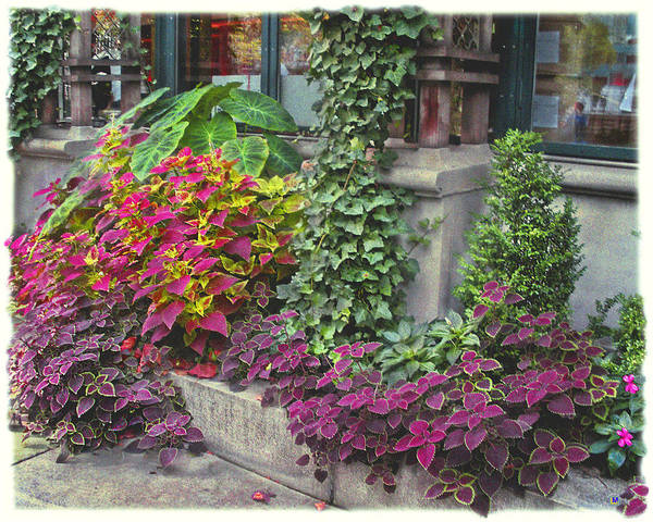 Bryant Park Print featuring the photograph Bryant Park Grill 3 by Muriel Levison Goodwin