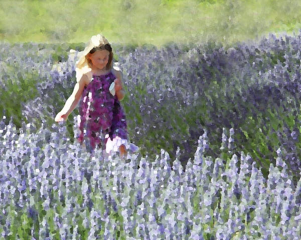 Lavender Print featuring the photograph Stroll Through The Lavender by Brooke Ryan