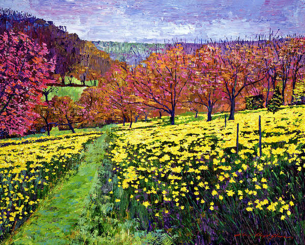 Impressionist Print featuring the painting Fields Of Golden Daffodils by David Lloyd Glover