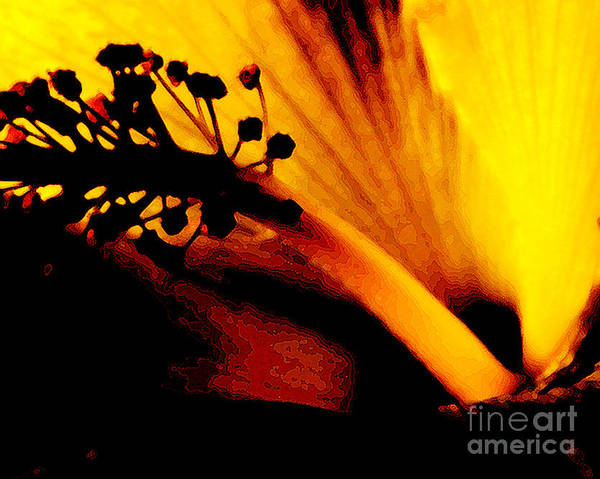 Flower Print featuring the photograph Heat by Linda Shafer