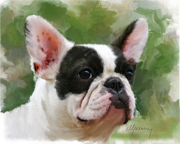 Dog Portraits Print featuring the painting Pet Bulldog Portrait by Michael Greenaway