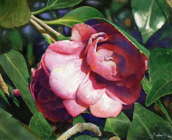 Flowers Print featuring the painting Camellianne by Andrew King