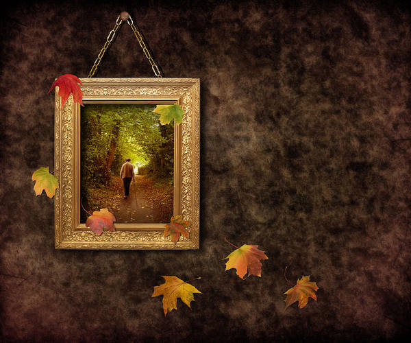 Autumn Print featuring the photograph Autumn Frame by Amanda And Christopher Elwell
