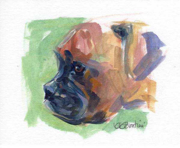 Boxer Puppy Print featuring the painting Boxer Pup by Kimberly Santini