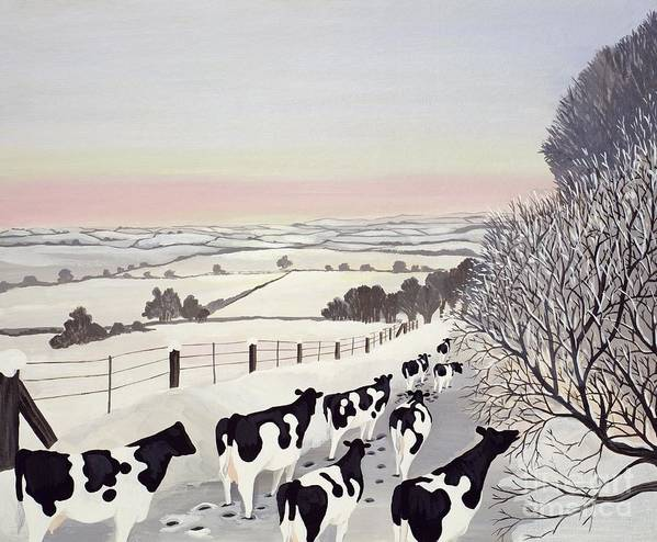 Fence; Cow; Cows; Landscape; Winter; Snow; Tree; Trees; Friesians; Animal; Farm Animal Print featuring the painting Friesians In Winter by Maggie Rowe