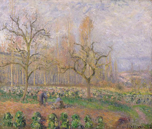 Verger A Pontoise; Landscape; Tree; Gardening; Gardener; Daily Life Scene; Tree; Trees; Vegetable Garden; Ile-de-france; Impressionist Print featuring the painting Orchard At Pontoise by Camille Pissarro
