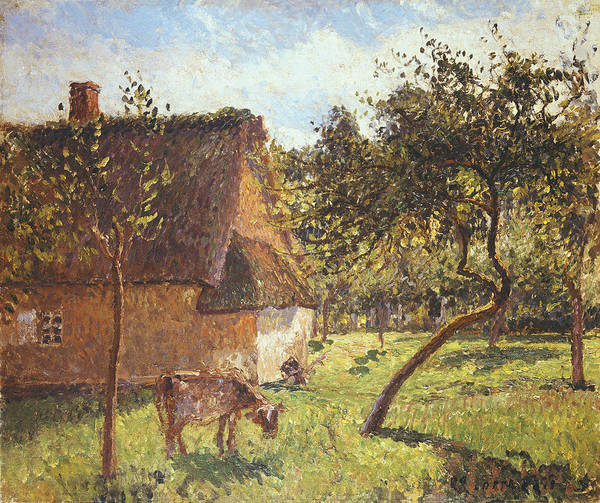 Field At Varengeville Print featuring the painting Field At Varengeville by Camille Pissarro