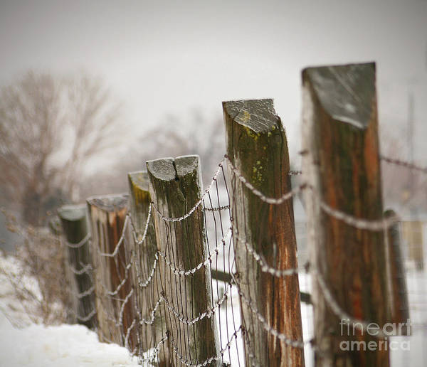 Cloud Print featuring the photograph Winter Fence by Sandra Cunningham