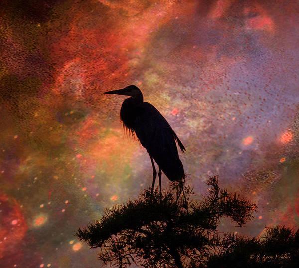 J Larry Walker Print featuring the digital art Great Blue Heron Viewing The Cosmos by J Larry Walker
