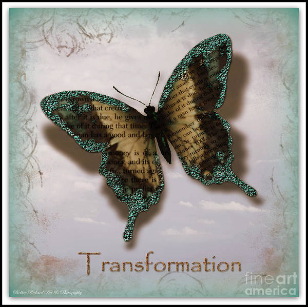 Butterfly Prints Print featuring the photograph Butterfly Of Transformation by Bobbee Rickard