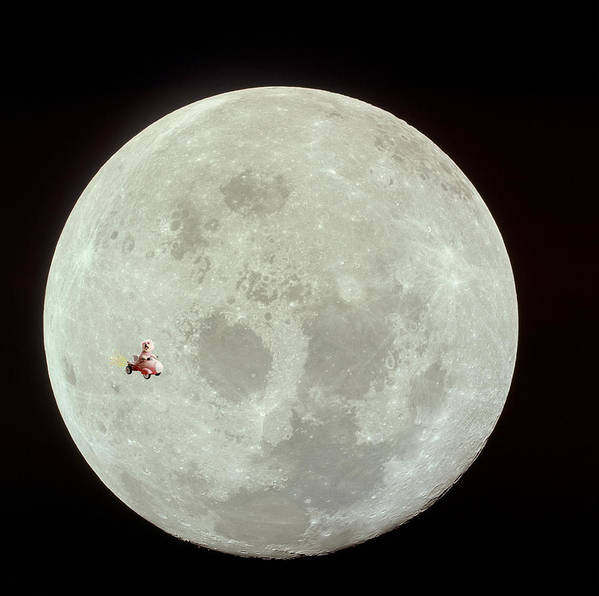 Animal Framed Prints Print featuring the photograph Fifi Goes To The Moon by Michael Ledray