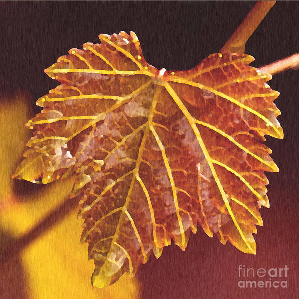 Red Grape Leaf Print featuring the painting Grapevine In Fall by Artist and Photographer Laura Wrede