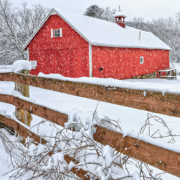Farm Print featuring the photograph It's Snowing Square by Bill Wakeley