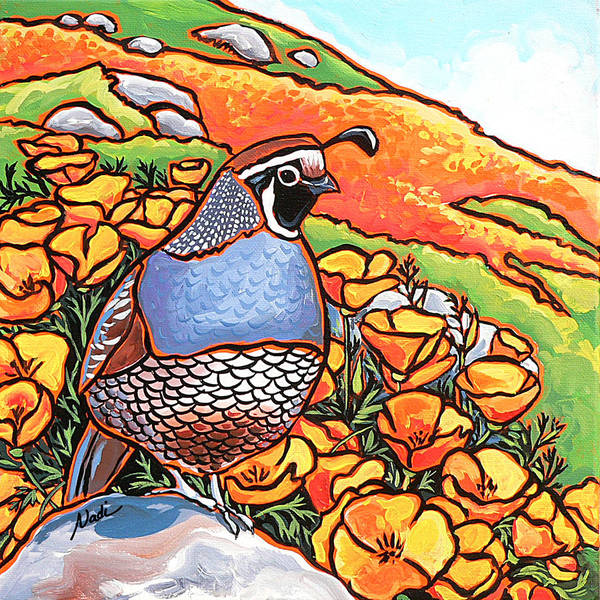 California Poppies Print featuring the painting Quail Poppies by Nadi Spencer
