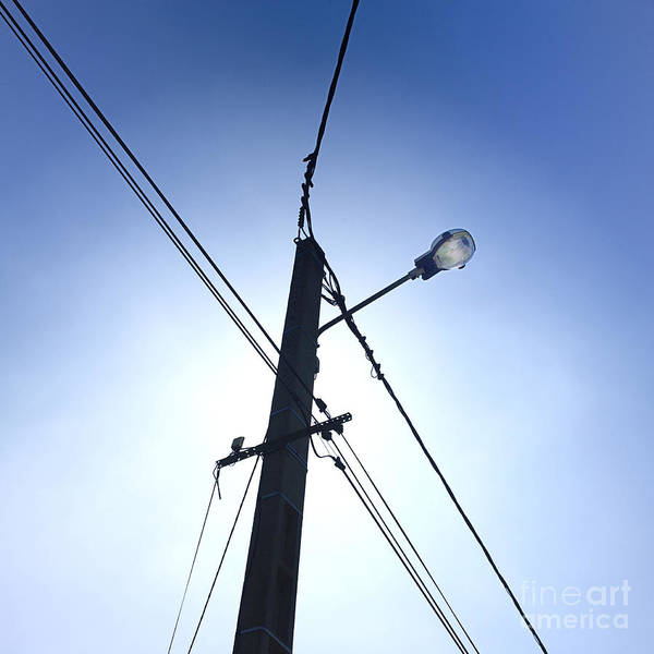 Wires Print featuring the photograph Street Lamp And Power Lines by Bernard Jaubert