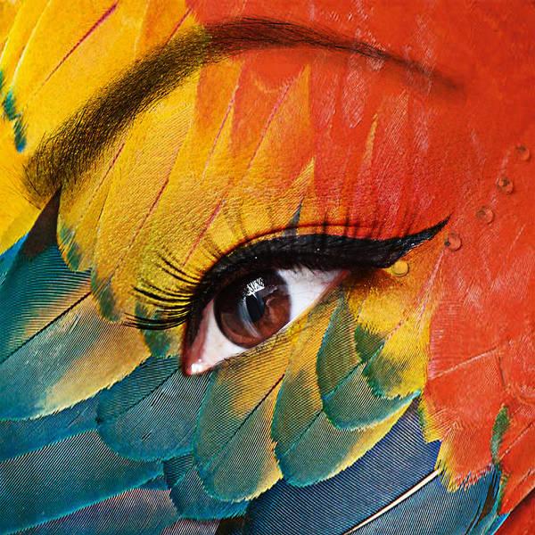 Human Eye Print featuring the photograph Macaw by Yosi Cupano
