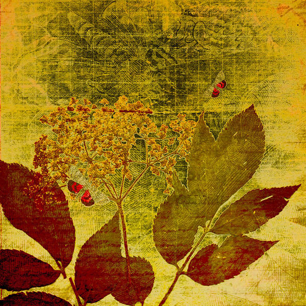 Digital Print featuring the digital art Nature At Work by Bonnie Bruno