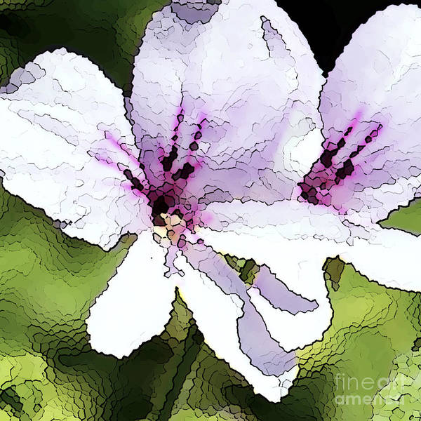 Geranium Print featuring the painting Purple Geranium by Artist and Photographer Laura Wrede