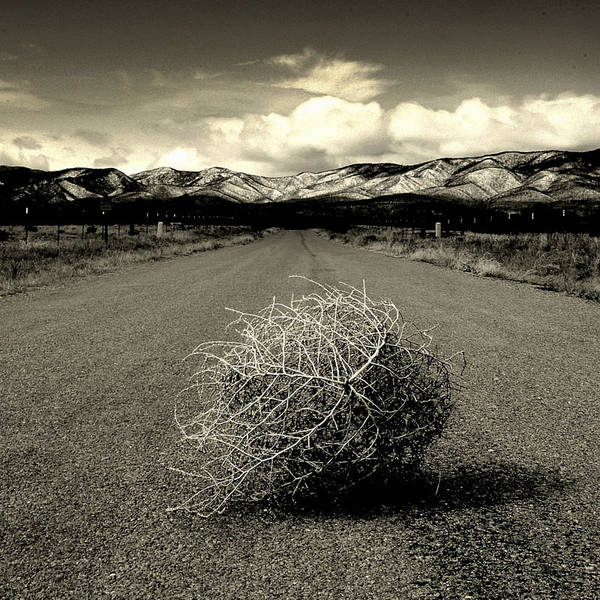 Tumbleweed Print featuring the photograph Blowin In The Wind.. by Al Swasey