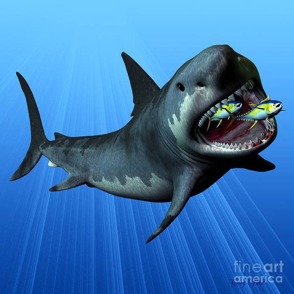 Megalodon Print featuring the painting Megalodon by Corey Ford