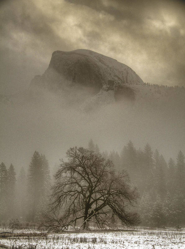 Beautiful Print featuring the photograph Yosemite In The Winter by Connie Cooper-Edwards