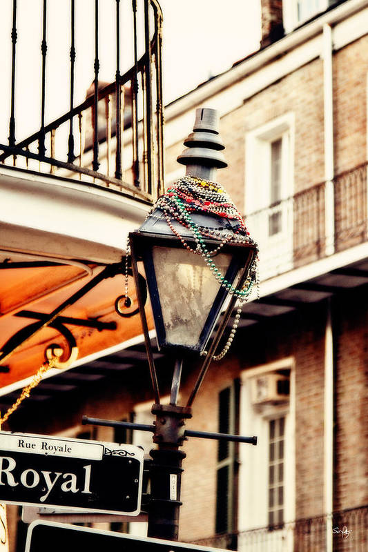 Gas Lamp Print featuring the photograph Dressed For The Party by Scott Pellegrin