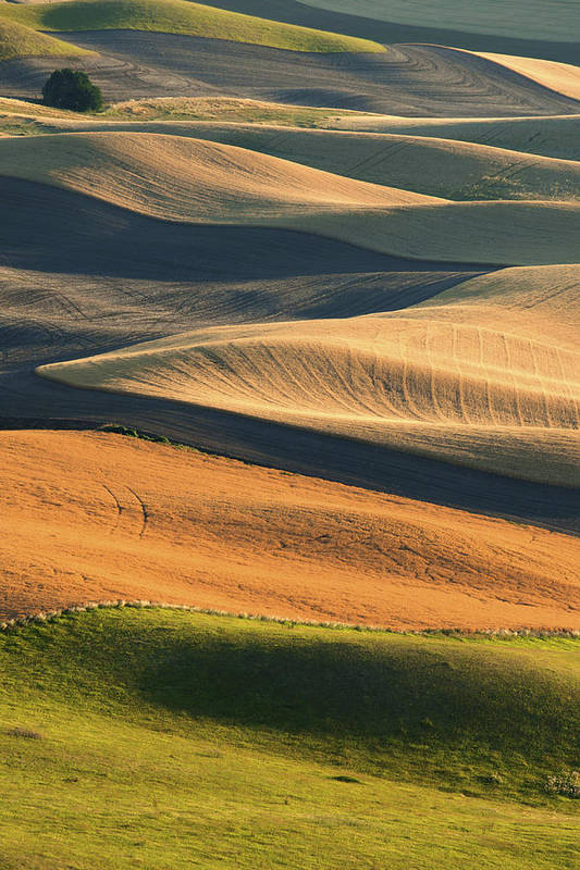 Usa Print featuring the photograph Patterns Of The Palouse by Latah Trail Foundation