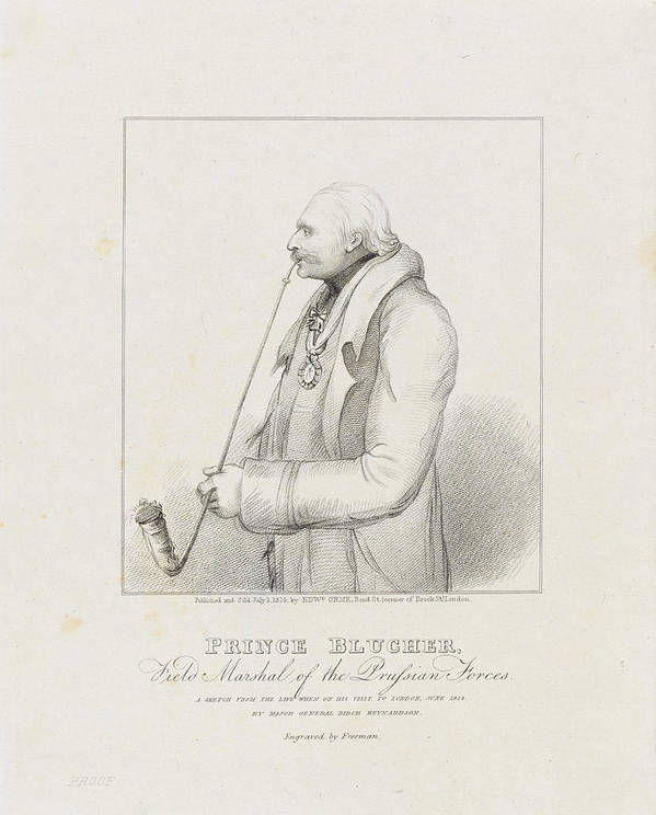 Prince Blucher Print featuring the drawing Prince Blucher by Samuel Freeman