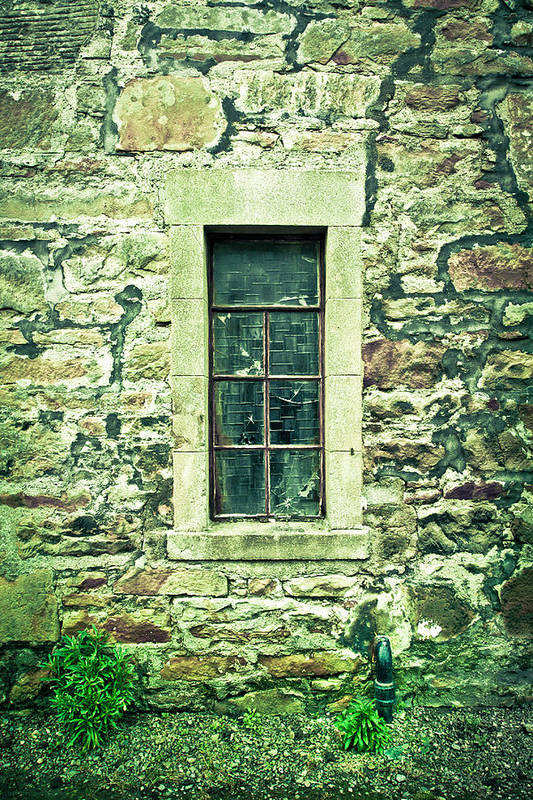 Abandoned Print featuring the photograph Window by Tom Gowanlock