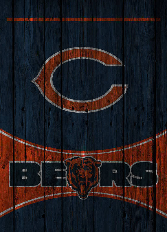 Bears Print featuring the photograph Chicago Bears by Joe Hamilton