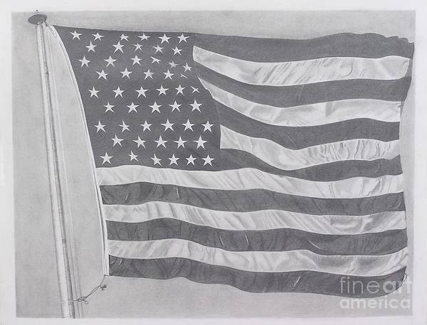 Flag Print featuring the drawing 50 Stars 13 Stripes by Wil Golden