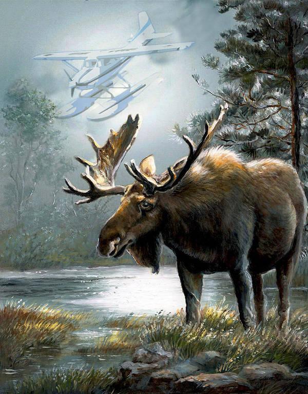 Alaska Moos With Floatplane Animal Art Print featuring the painting Alaska Moose With Floatplane by Gina Femrite