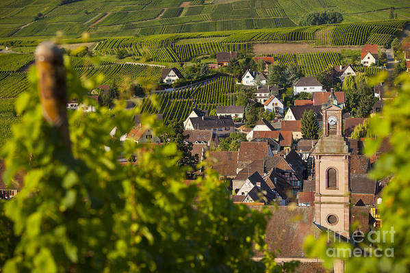 Alsace Print featuring the photograph Alsace Morning by Brian Jannsen
