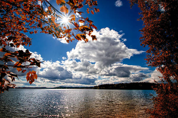 Landscape Print featuring the photograph Autumn Confidential by Bob Orsillo