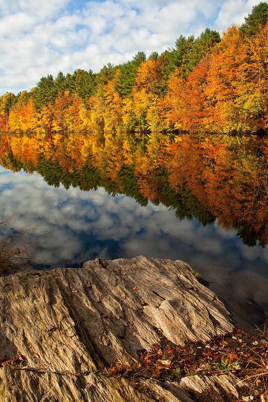 Autumn Print featuring the photograph Autumn Day by Karol Livote