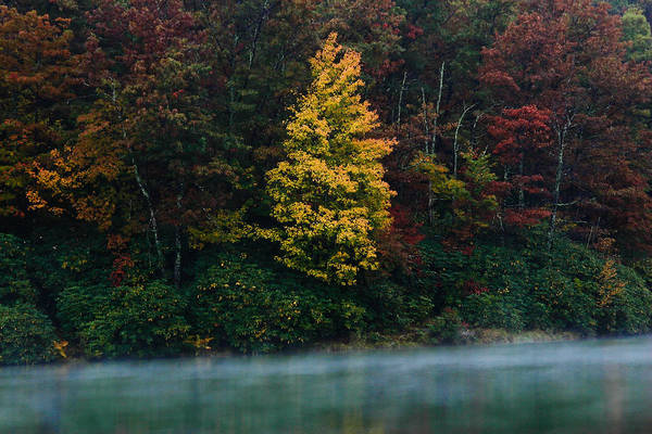 Autumn Print featuring the photograph Autumn Splendor by Shane Holsclaw