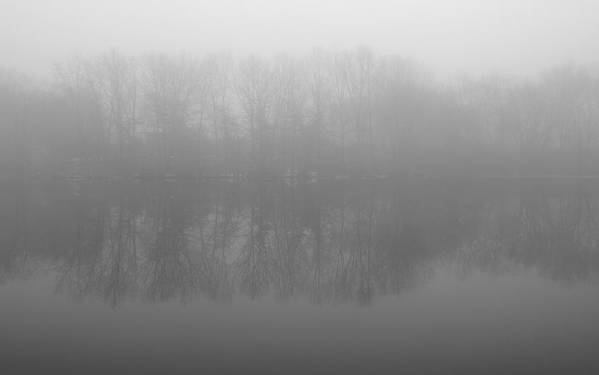 Misty Print featuring the photograph Awakening by Luke Moore