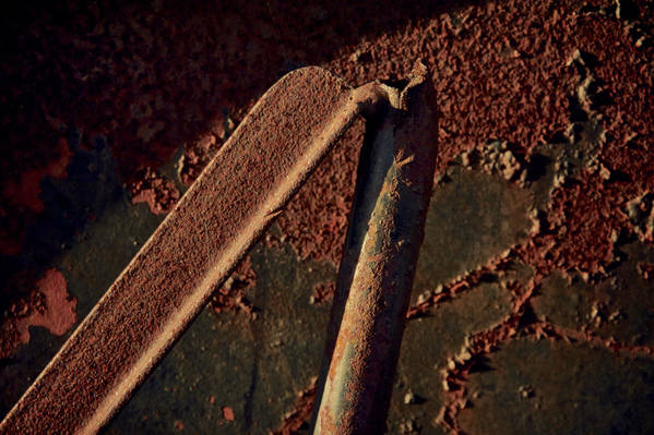 Rust Print featuring the photograph Bipod by Odd Jeppesen