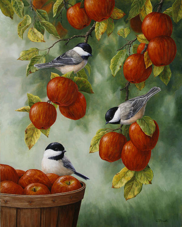 Birds Print featuring the painting Bird Painting - Apple Harvest Chickadees by Crista Forest