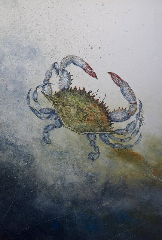 Crab Print featuring the mixed media Blue Crab Print by Nancy Gorr